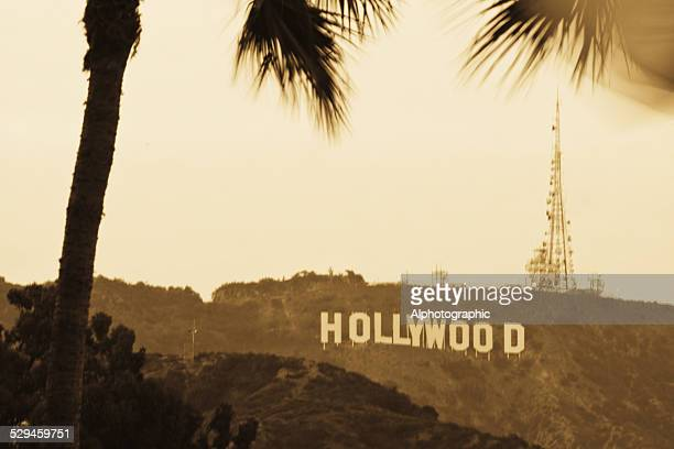hollywood sign - hollywood stock pictures, royalty-free photos & images
