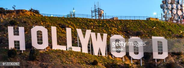 hollywood sign - american animals film stock photos and pictures
