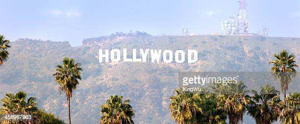 Hollywood Sign with Palm trees