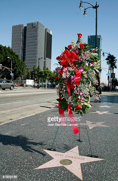 Hollywood Walk of Fame remembers Cyd Charisse on June 17 2008 in Hollywood California