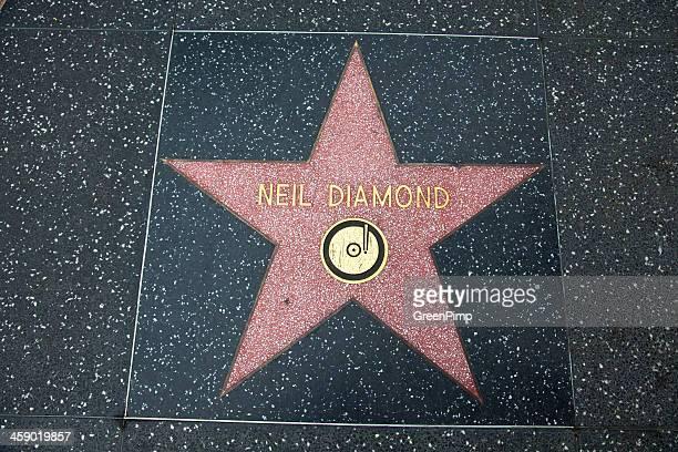 hollywood walk of fame star neil diamond - neil diamond photos stock pictures, royalty-free photos & images