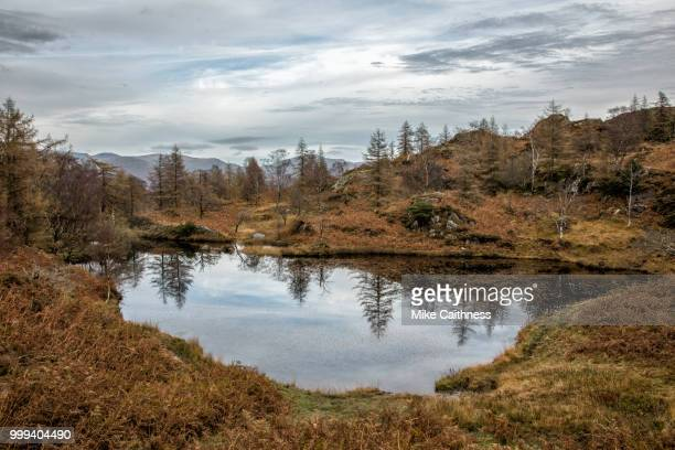 holme fell tarn - mike caithness stock pictures, royalty-free photos & images