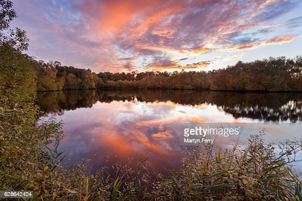 Holme Fen Sunset reflection, Holme, Cambridgeshire, East Anglia, UK