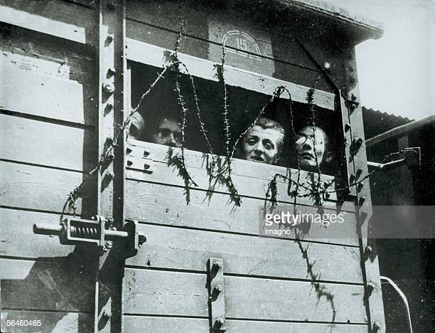 Holocausttransport to a concentration camp in Poland four men are looking outside of a nailed up scuttle on a railwaycar Photography 1943...