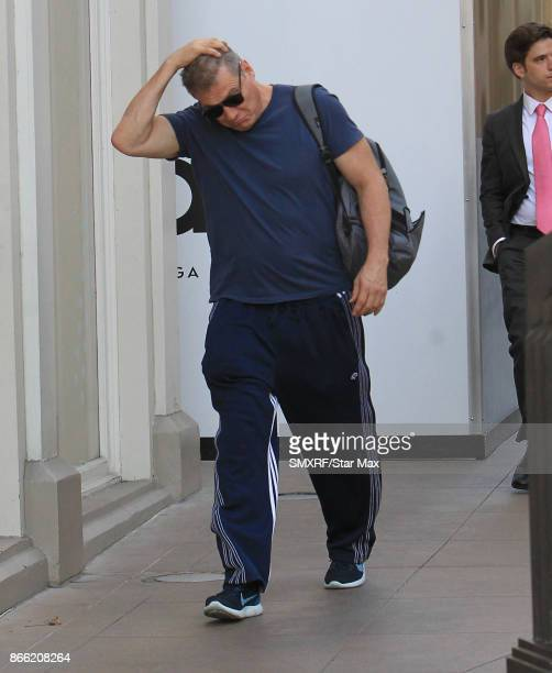 Holt McCallany is seen on October 24 2017 in Los Angeles CA