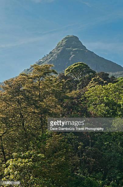 Holy Adam's Peak