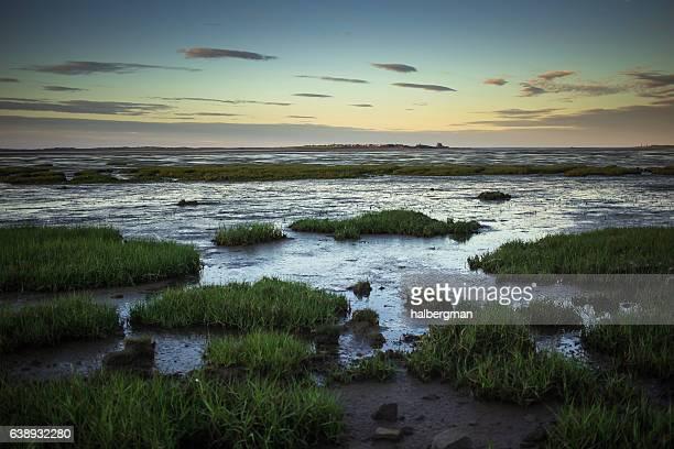 holy island view at dusk - sumpf stock-fotos und bilder