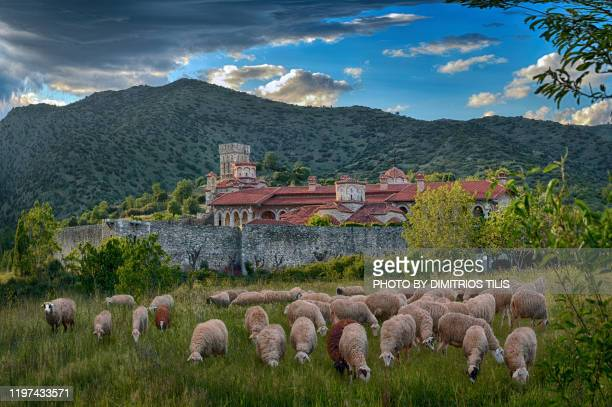 holy monastery of st. john the theologian at zarkos - dimitrios tilis stock pictures, royalty-free photos & images