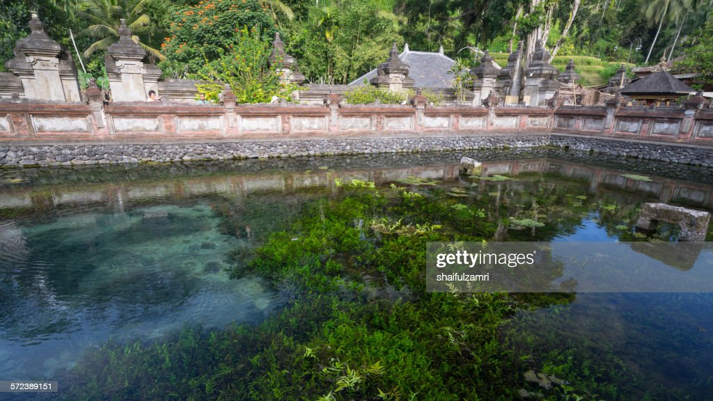 Holy spring water in Bali : Foto de stock