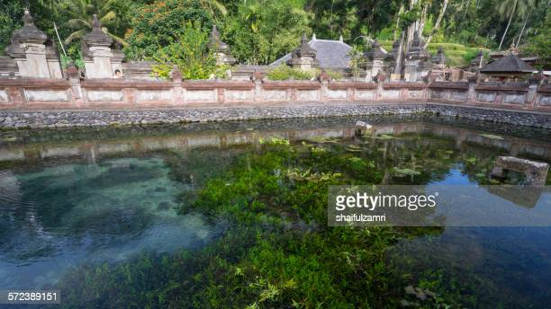 holy spring water in bali - shaifulzamri fotografías e imágenes de stock