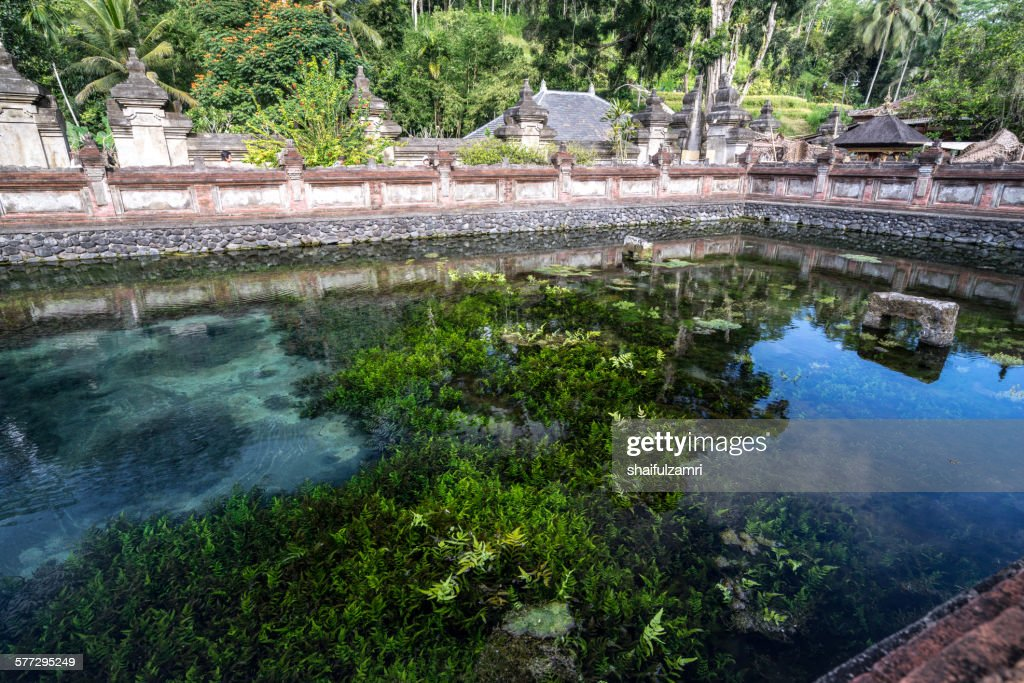 Holy spring water in Bali : ストックフォト