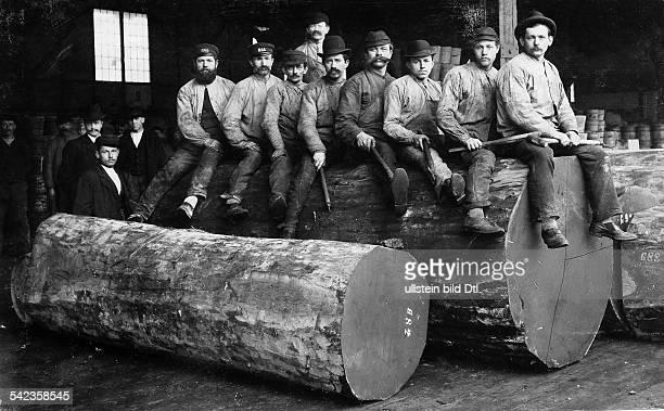 Holzfäller in Oregon die Jeans von Levi Strauss tragen sitzen auf einem Riesenbaumstamm 1880