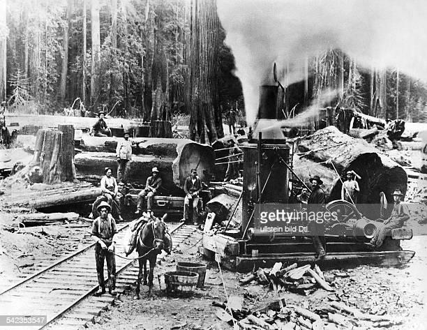 Holzfäller in Oregon die Jeans von Levi Strauss tragen um 1880