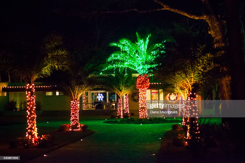 A Home And Date Palm Trees Decorated For Christmas Ponte Vedra