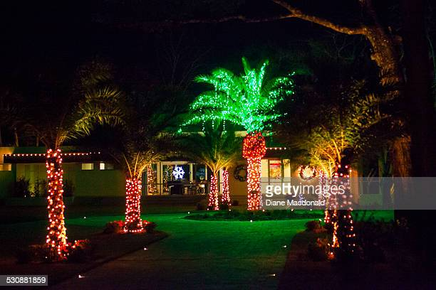 a home and date palm trees decorated for christmas ponte vedra beach florida usa in december