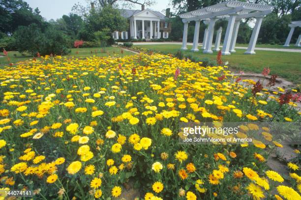Home and gardens of the Boone Hall Plantation Charleston SC