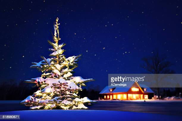 home at christmas - non urban scene stock pictures, royalty-free photos & images