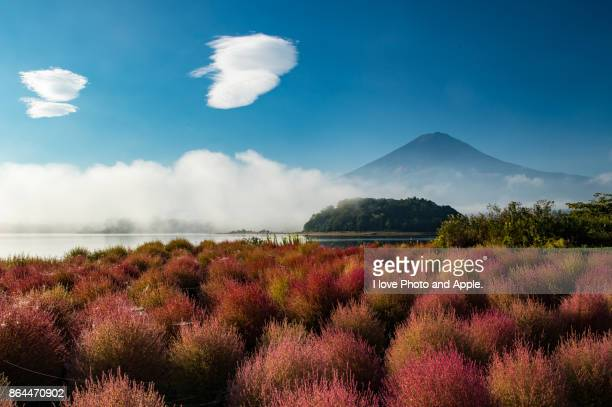 home away from home - fuji hakone izu national park stock photos and pictures