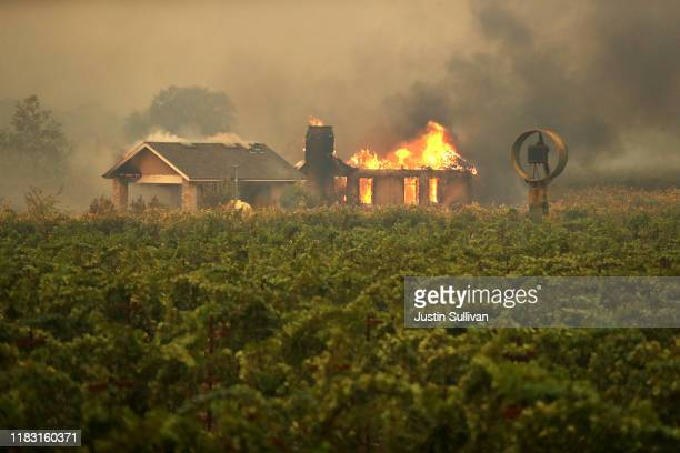 A home burns near a vineyard after the Kincade Fire burned through the area on October 24 2019 in Geyserville California Fueled by high winds the...