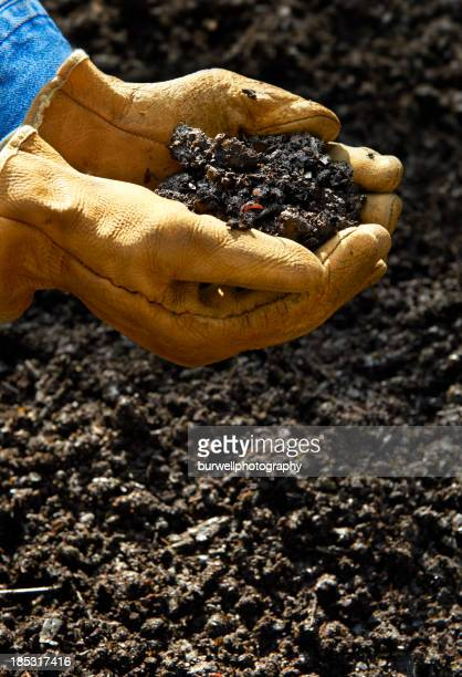 home composting, hand holding compost soil - worm stock photos and pictures