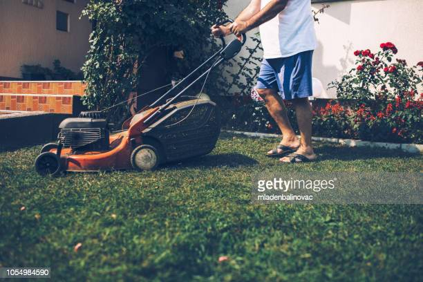 home gardening - lawn stock pictures, royalty-free photos & images