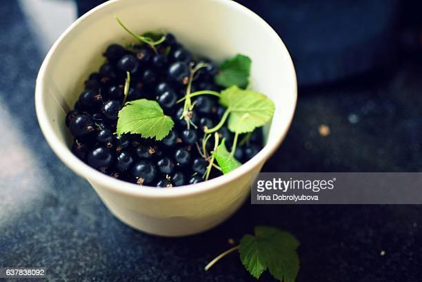 home grown black currant
