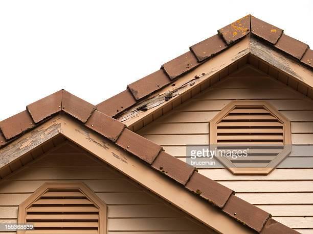 bricolage nécessaire - termite photos et images de collection