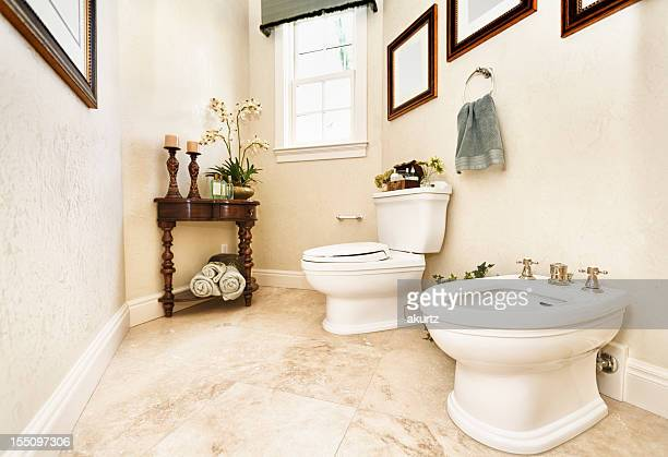 Home interior power room bathroom with bidet
