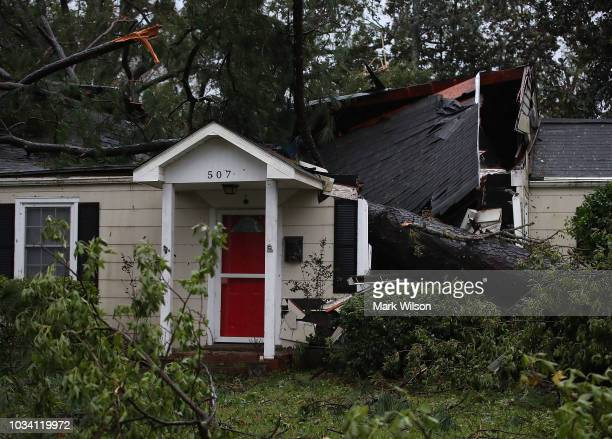 A home is damaged after a large tree fell on it on September 16 2018 in Wilmington North Carolina Hurricane Florence hit Wilmington as a category 1...