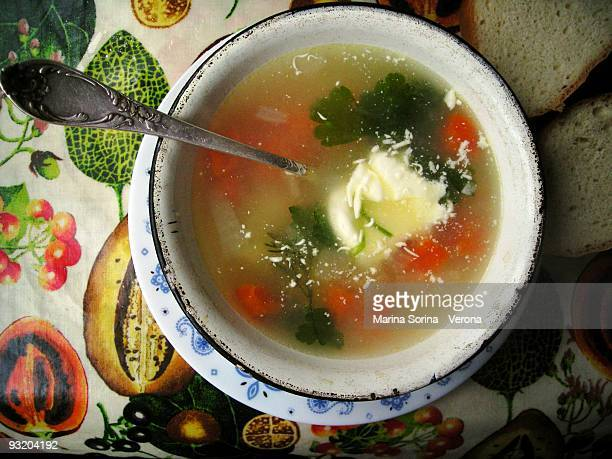 Home made ukrainian vegetable soup
