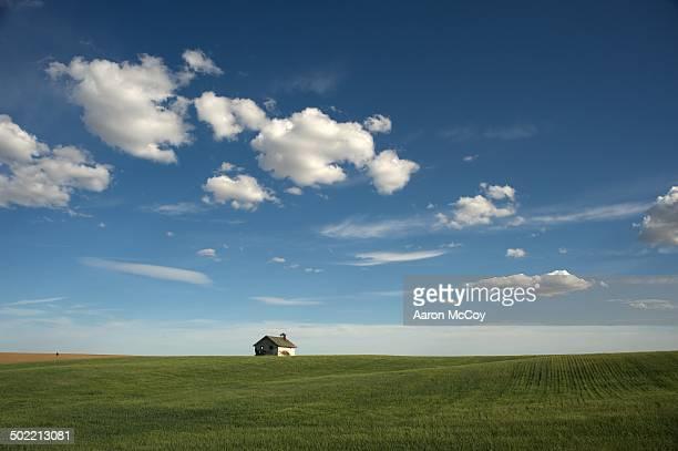 home on the prairie - prateria zona erbosa foto e immagini stock