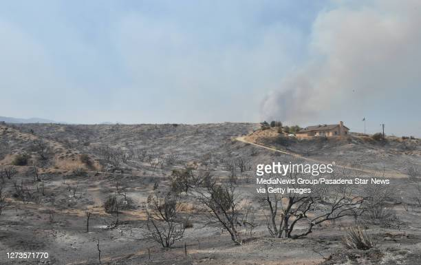 A home sits undamaged along Cima Mesa Road after the Bobcat Fire sweep through in Juniper Hills on Saturday September 19 2020