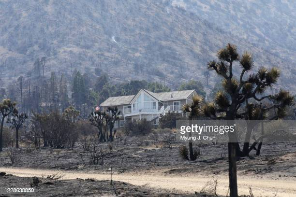 A home stands among the charred surrounding in Juniper Hills A resident said it was so random how some homes burned and some didnt in the Bobcat Fire...