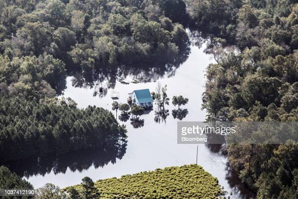 A home surrounded by floodwater is seen in this aerial photograph taken above Willard North Carolina US on Friday Sept 21 2018 Record floods cover...