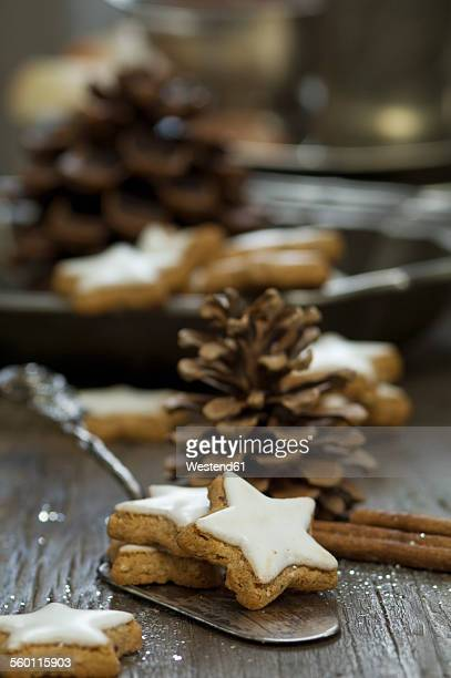 Home-baked cinnamon stars and fir cones