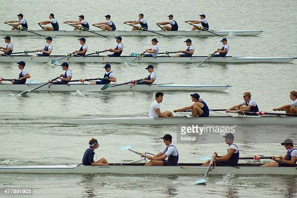 homebush bay rowers - rowing stock pictures, royalty-free photos & images