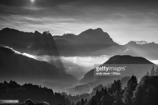 homeland - andy dauer stock photos and pictures