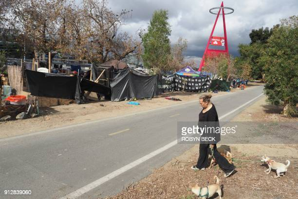 Homeless encampment resident Tammy Schuler walks her dogs beside a row of tents and tarps that line the Santa Ana River bicycle path near Angel...