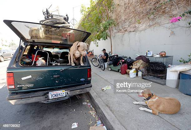 A homeless man for over 30 years who lives inside his car repairs a bicycle as his dog Honey and neighbor's dog Niko stand guard September 23 in the...