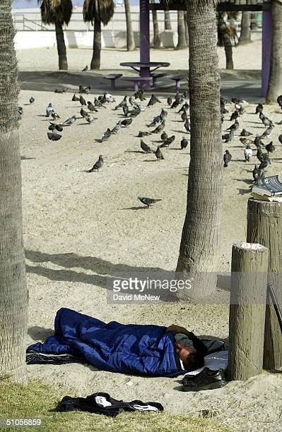 A homeless man sleeps near a flock of pigeons July 13 2004 in Venice California An influx of wealthy home buyers is driving real estate prices up and...