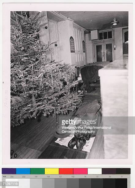 A homeless man sleeps on his shoes and under his coat near a decorated christmas tree New York New York early 1940s The photo is titled 'Slumber time...