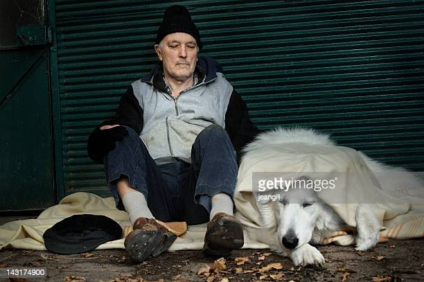 homeless man with his dog - homeless person stock pictures, royalty-free photos & images