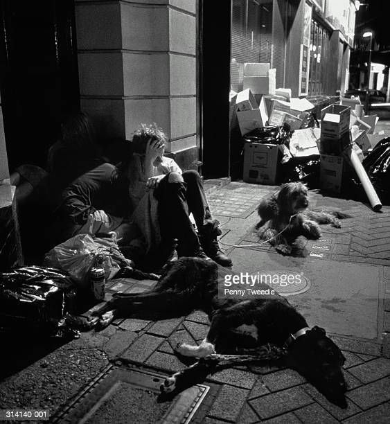 homeless people with dogs, huddled together in doorway, night (b&w) - glitch art stock-fotos und bilder