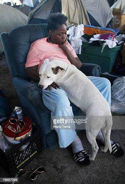 Homeless woman Sara Brown sits with a pit bull beneath Interstate 10 where hundreds of homeless people sleep each night February 10 2008 in New...