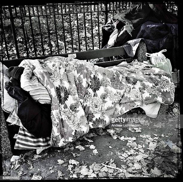 A homeless woman sleeps on a park bench at the edge of Prospect apark in Brooklyn