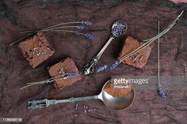 homemade brownies with lavender - chocolate cake above stock pictures, royalty-free photos & images