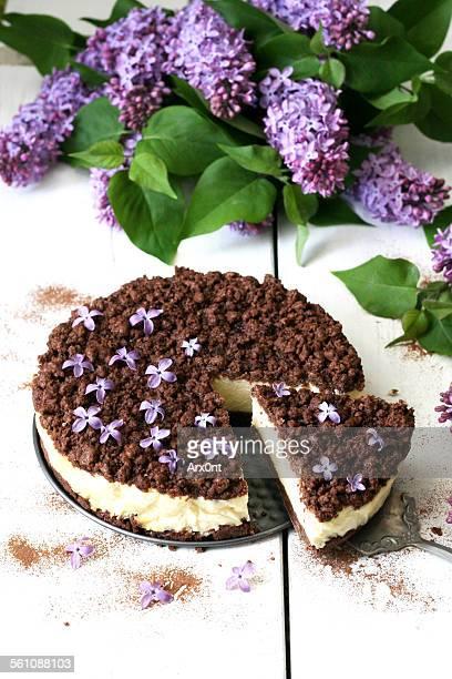 Homemade cheesecake with chocolate crumbs