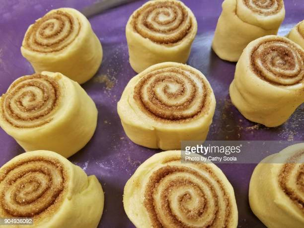 homemade cinnamon rolls ready for oven