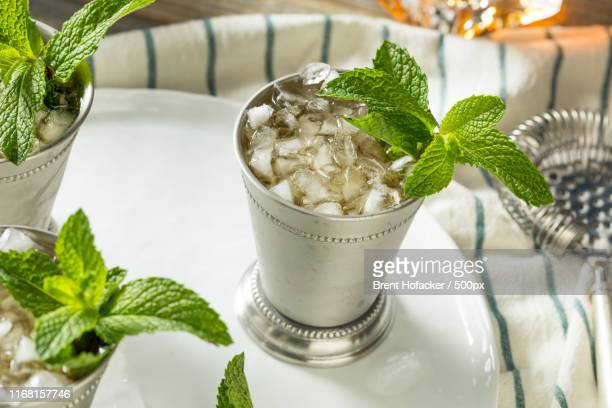 homemade kentucky mint julep - mint julep stock pictures, royalty-free photos & images