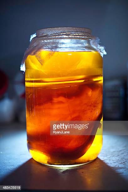 Kombucha caseras té